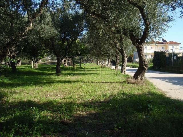 (For Sale) Land Plot || Zakynthos (Zante)/Laganas - 6.000 Sq.m, 380.000€