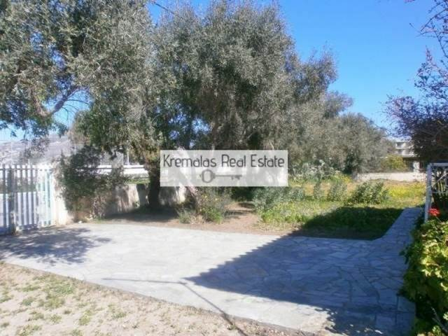 (For Sale) Land Agricultural Land  || East Attica/Palaia Phokaia - 825Sq.m, 165.000€